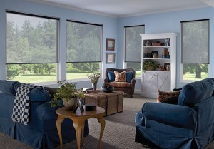 roller shades from Eclipse